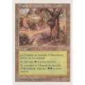 MTG Magic ♦ 5th Edition 1997 ♦ Champ de Bataille d'Havrebois VF NM