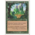 MTG Magic ♦ 7th Edition ♦ Moisissure Rampante VF NM