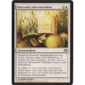 MTG Magic ♦ Eventide ♦ Horizons Interminables VF NM