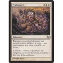 MTG Magic ♦ Eventide ♦ Endurance VF NM