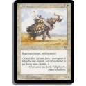 MTG Magic ♦ Mirage ♦ Éléphant Noble VF NM