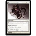 MTG Magic ♦ Saviors of Kamigawa ♦ Rideau de Lumière VF NM