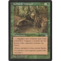 MTG Magic ♦ Stronghold ♦ Jardins de Wöhlrajh VF NM