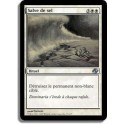 MTG Magic ♦ Planar Chaos ♦ Salve de Sel VF NM