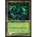 MTG Magic ♦ Arena League 1999 ♦ Forest Urza English FOIL NM-EX