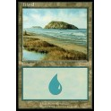 MTG Magic ♦ Arena League 2003 ♦ Island English EX