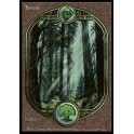 MTG Magic ♦ Unglued ♦ Forest English EX