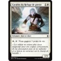 MTG Magic ♦ Battle for Zendikar ♦ Carabin du Refuge de Pierre VF Mint