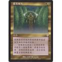 MTG Magic ♦ Invasion ♦ Sterling Grove Chinese NM (G)