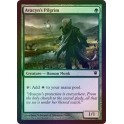 MTG Magic ♦ Innistrad ♦ Avacyn's Pilgrim English FOIL NM (G)