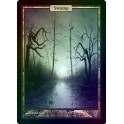 MTG Magic ♦ Unhinged ♦ Swamp English FOIL EX (G)
