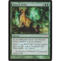 MTG Magic ♦ DCI Judge Gift ♦ Natural Order English FOIL NM (G)