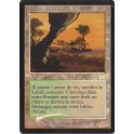 MTG Magic ♦ Onslaught-Carnage ♦ Lande Venteuse VF FOIL EX-Good (G)
