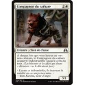 MTG Magic ♦ Shadows over Innistrad ♦ Compagnon du Cathare VF Mint