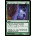 MTG Magic ♦ Dark Ascension ♦ Sauvagerie Grandissante VF NM