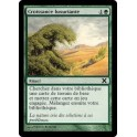 MTG Magic ♦ 10th Edition ♦ Croissance Luxuriante VF NM