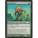 MTG Magic ♦ Lorwyn ♦ Lignification VF FOIL NM