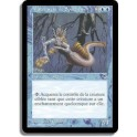 MTG Magic ♦ Tempest ♦ Matriarche de Souchemer VF NM