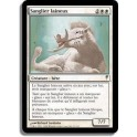 MTG Magic ♦ Coldsnap ♦ Sanglier Laineux VF NM