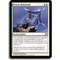 MTG Magic ♦ Champions of Kamigawa ♦ Prison Fantomale VF NM