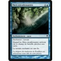 MTG Magic ♦ Zendikar ♦ Mers Envahissantes VF FOIL NM