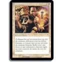 MTG Magic ♦ Invasion ♦ Purs Reflets VF NM