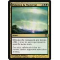 MTG Magic ♦ Alara Reborn ♦ Pulsation du Maelstrom VF FOIL NM