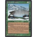 MTG Magic ♦ Ice Age ♦ Sources Thermales VF NM