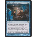 MTG Magic ♦ Shadowmoor ♦ Malice selon le Pucca VF NM