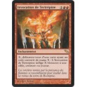 MTG Magic ♦ Shadowmoor ♦ Invocation de Tertrépine VF NM