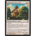 MTG Magic ♦ Lorwyn ♦ Arbitre de Tertrecime VF NM