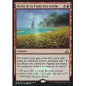 MTG Magic ♦ Rivals of Ixalan ♦ Don d'Hardiesce/Botin dela Coalicion Azofar FOIL Promo Spanish Mint