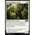 MTG Magic ♦ M19 Edition ♦ Frère de bande d'Ajani French Mint