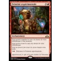 MTG Magic ♦ Guilds of Ravnica ♦ Frénésie expérimentale FOIL French Mint