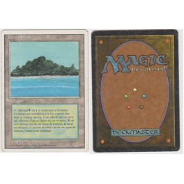 MTG Magic ♦ 3rd Edition 1994 ♦ Ile Tropicale / Tropical Island French Played (C)