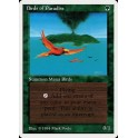 MTG Magic ♦ 3rd Edition 1994 ♦ Oiseaux de Paradis French PLayed