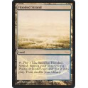 MTG Magic ♦ DCI Judge Gift ♦ Flooded Strand English FOIL NM
