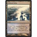 MTG Magic ♦ DCI Judge Gift ♦ Polluted Delta English FOIL NM
