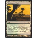 MTG Magic ♦ DCI Judge Gift ♦ Windswept Heath English FOIL NM