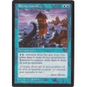 MTG Magic ♦ Visions ♦ Rivage Inondé VF NM