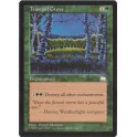 MTG Magic ♦ Weatherlight-Aquilon ♦ Tranquil Grove English NM