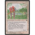 MTG Magic ♦ Homelands ♦ La Volière Serraïte VF NM
