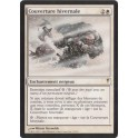 MTG Magic ♦ Coldsnap ♦ Couverture Hivernale VF NM
