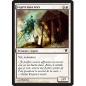 MTG Magic ♦ Innistrad ♦ Esprit sans Voix VF NM