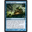 MTG Magic ♦ Innistrad ♦ Alchimie Interdite VF NM