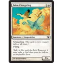 MTG Magic ♦ Modern Masters ♦ Avian Changeling English Mint