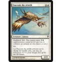 MTG Magic ♦ Worldwake ♦ Faucons du Zénith VF NM