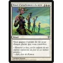 MTG Magic ♦ Zendikar ♦ Rituel d'Attachement à la Terre VF NM