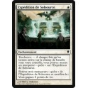 MTG Magic ♦ Zendikar ♦ Expédition de Solsource VF NM