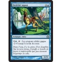 MTG Magic ♦ Return to Ravnica ♦ Destrier Aquus VF NM
